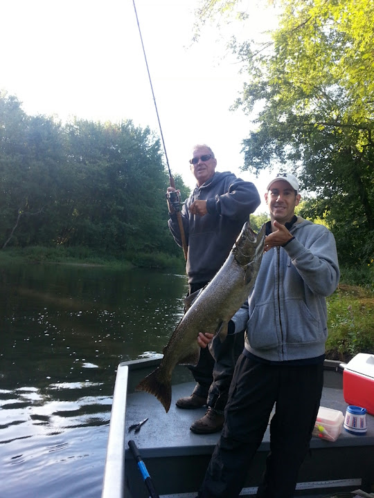 King Salmon on the Pere Marquette River