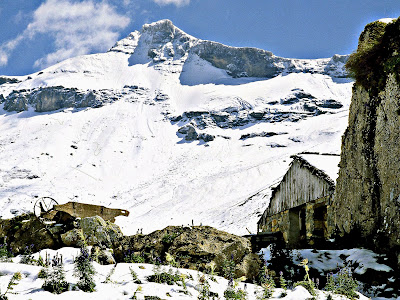 Adelboden Engstligenalp Berner Oberland Schweiz