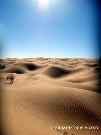 Le Luxe du Sahara, à portée de main