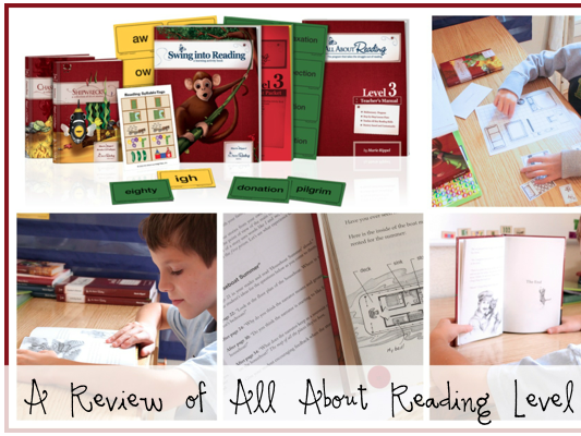 All About Reading Level 3 {Review}