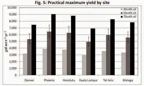 Algae Oil A Promising Contender