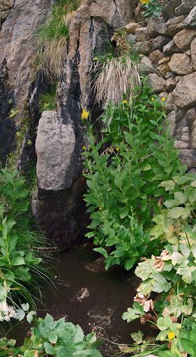 La fontaine miraculeuse de Vetta di Muru