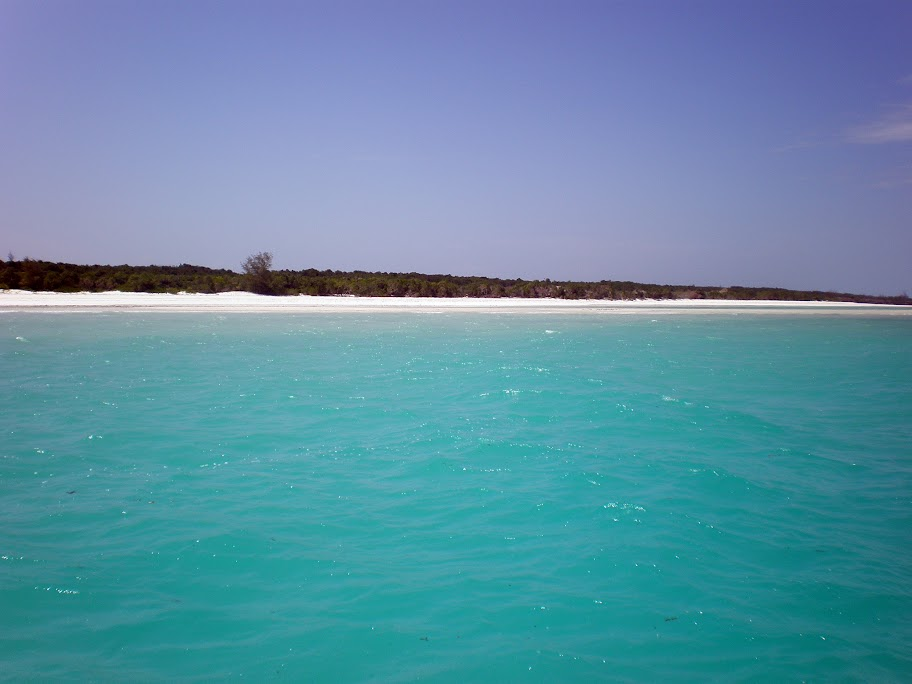 Taken from dive boat - Mnemba Atoll, Zanzibar