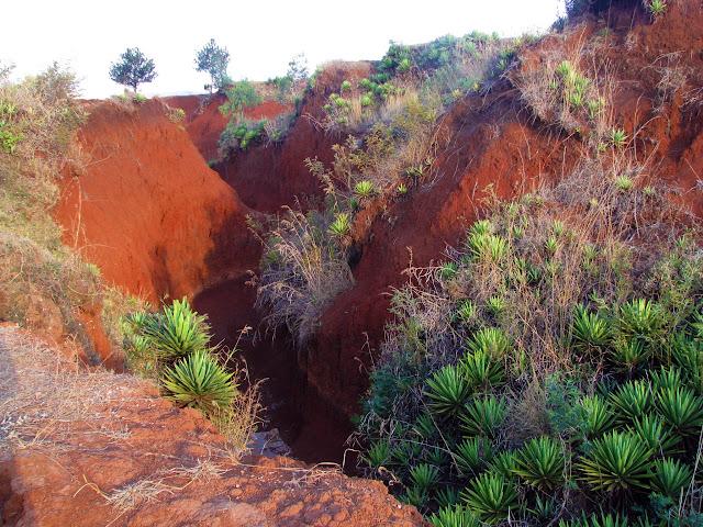 صور من مدغشقر Madagascar 14851373936