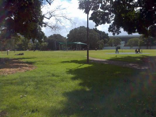 Wentworth Park, Wentworth Park Road, Sydney NSW 2037, Australia