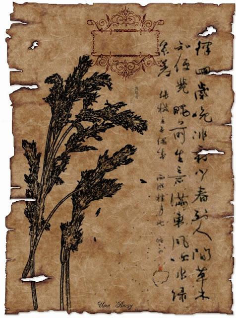 Бомжом, первая открытка китайская