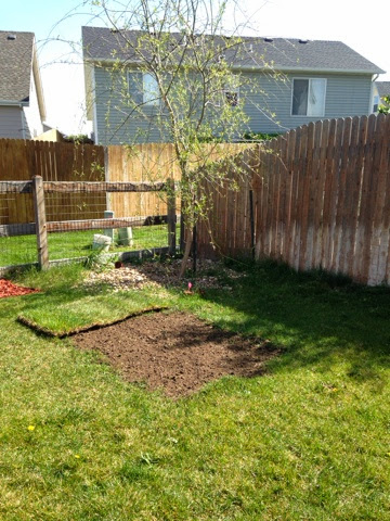 BEFORE AND AFTER: backyard makeover www.thebrighterwriter.blogspot.com