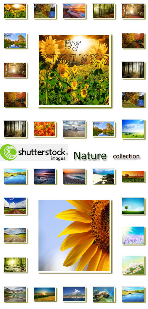 Stock Photo: Nature