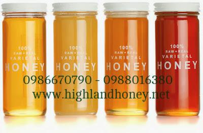 Loại mật ong ngon nhất được lấy từ vùng nào của Việt Nam?