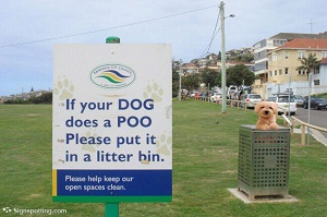 If your dog does a poo, Please put it in a litter bin