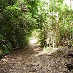 The Bar Trail (364016)