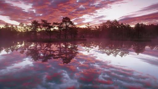 Sunset Reflections, Knuthojdsmossen, Vastmanland, Sweden.jpg