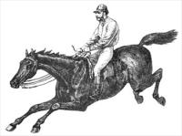 horse-13.jpg