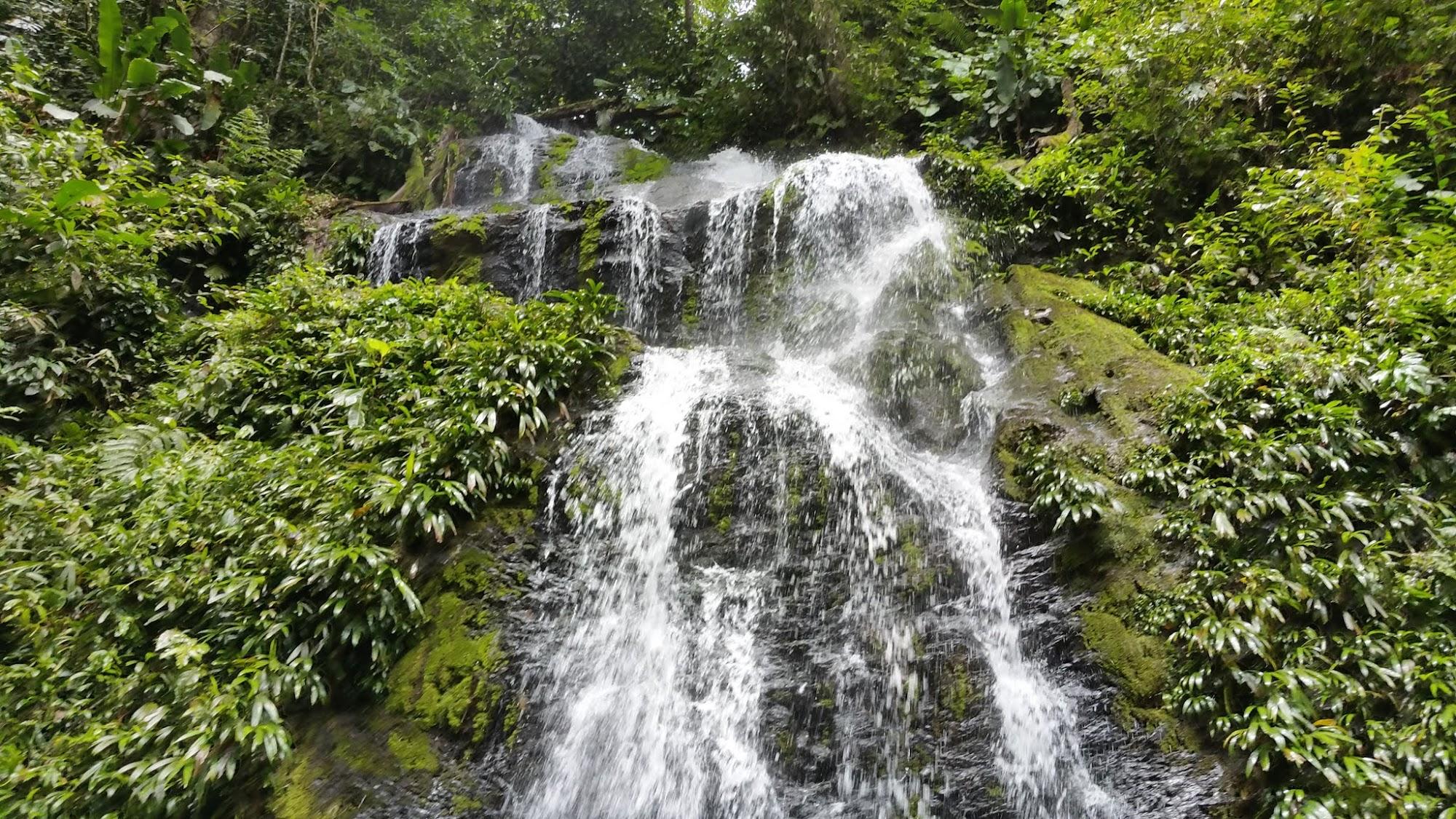 Reisinformatie Suriname