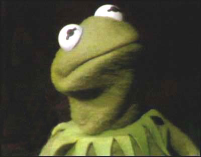 Kermit the frog angry - photo#4
