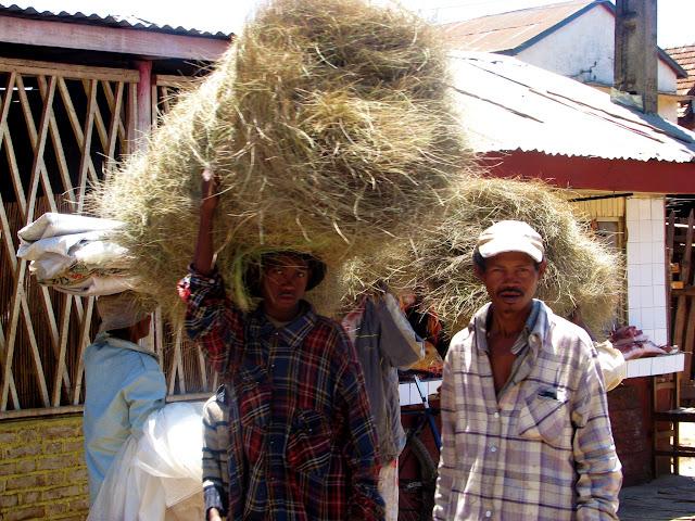 صور من مدغشقر Madagascar 14847325228