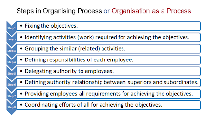 steps in organising process