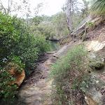 River track (55865)
