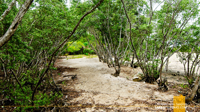 Pathways at Olango Island Wildlife Sanctuary in Cebu