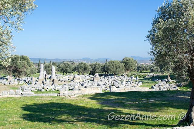 Teos antik kenti kazıları, Seferihisar