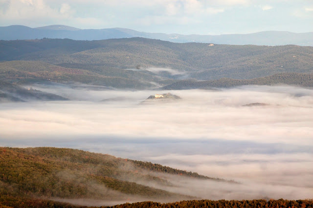 On top of the fog: January in Montalcino