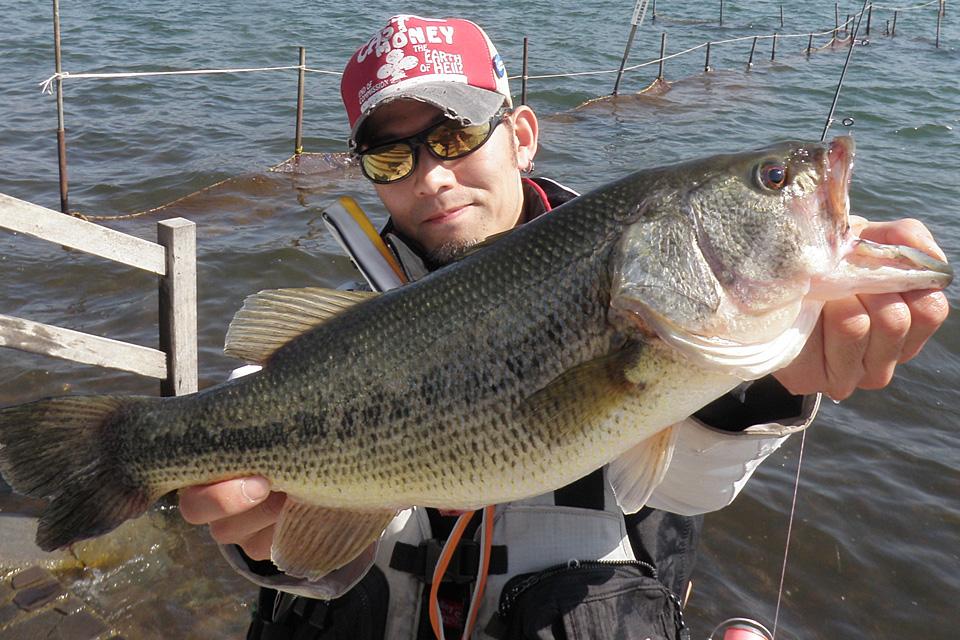 山中湖 47cm