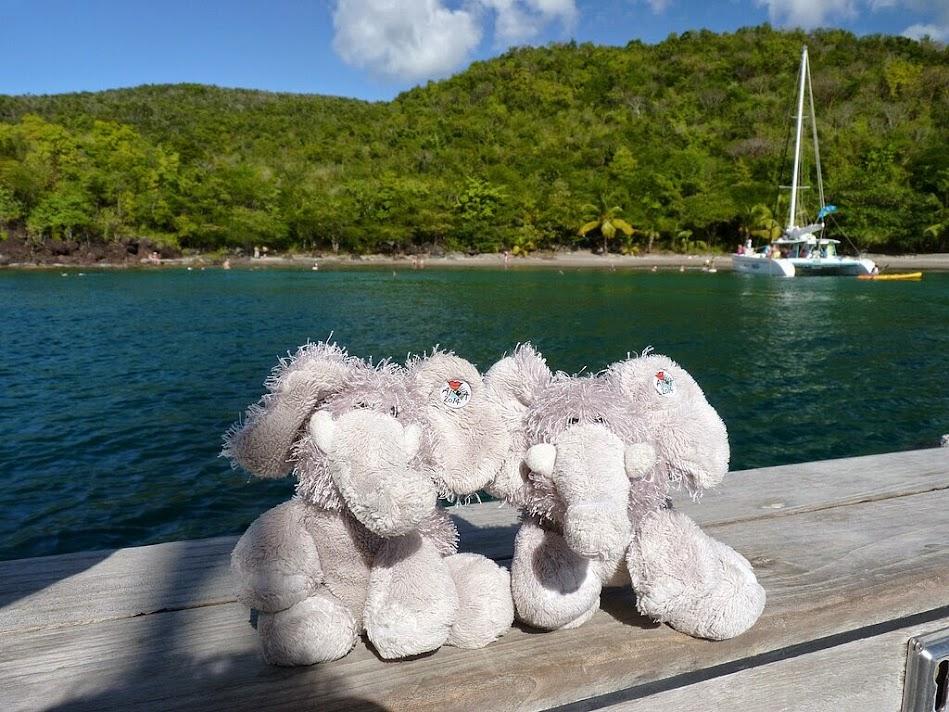 Слоны по-карибски: круиз AIDAluna, февраль 2014
