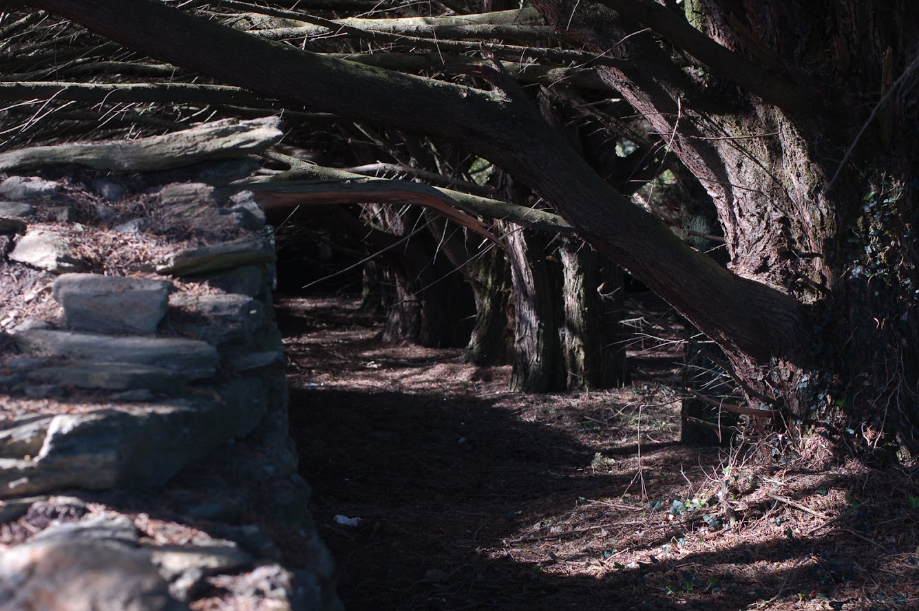 [bank] Vos photos de référence perso : Environnements naturels DSC_0168