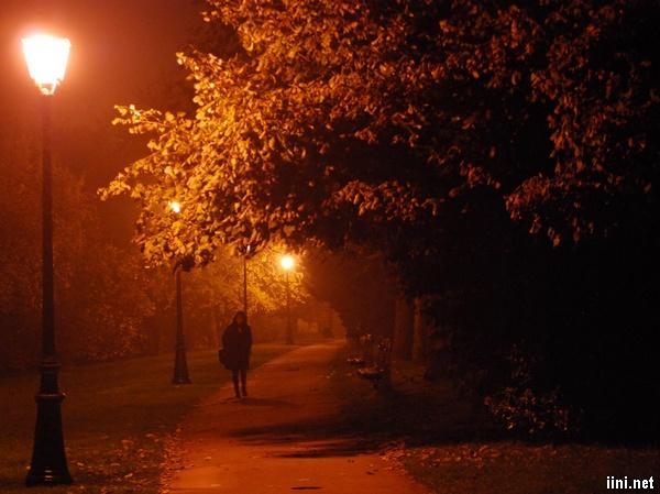 ảnh cô đơn trong đêm