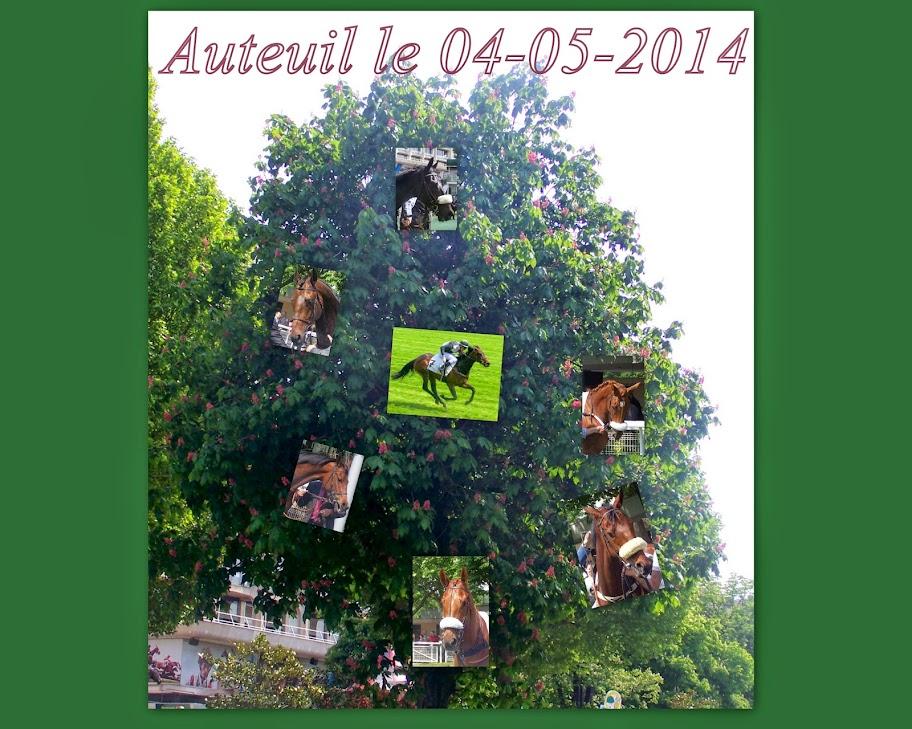 Photos Auteuil le 04-05-2014 Refaites1