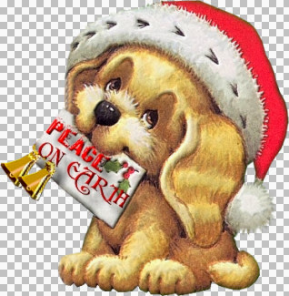 Christmas puppy01_dede(@).jpg