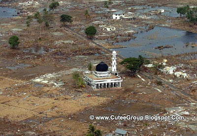 2004: Indian Ocean earthquake and tsunami. Richter scale: 9.2, Deaths: 230,000
