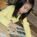 Three part cards are a key activity in Montessori: children read labels or descriptions, and match them to pictures. A control card with both label and picture helps them self-check their work.