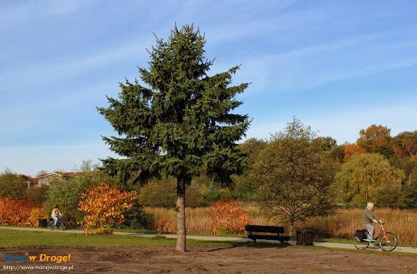 Park Reagana w Gdańsku - ścieżki rowerowe