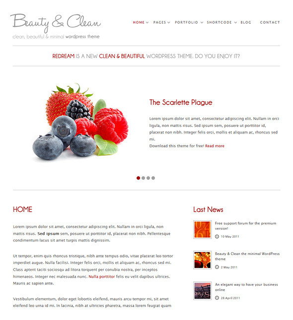 Beauty & Clean WordPress Theme