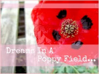 Dreams In A Poppy Field...