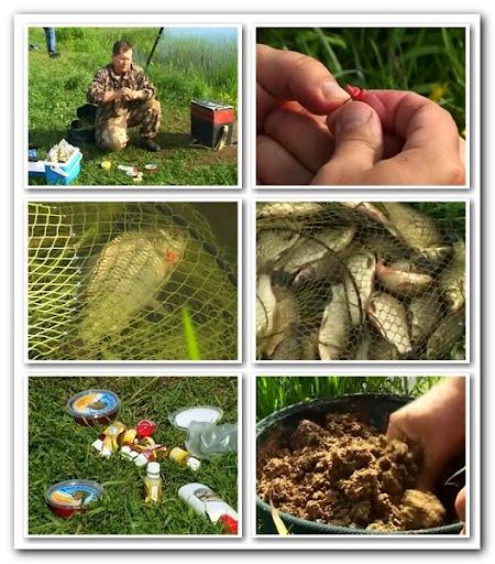видео о весенней ловле карася