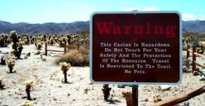 Cactus Garden Waning Sign