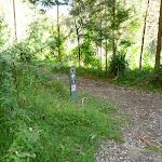 River Side track (384206)