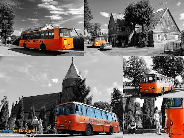 Szalony pomarańczowy autobus na wycieczce po Żuławach