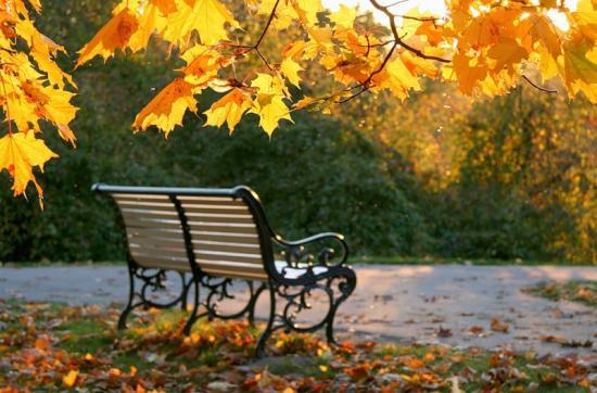 nắng mùa thu