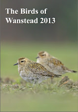 The Birds of Wanstead 2013