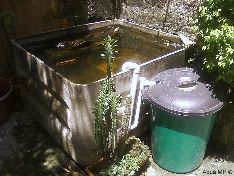 Caixa-Lago 1.000L + Filtro Balde 100L = Água Cristalina Foto-0051