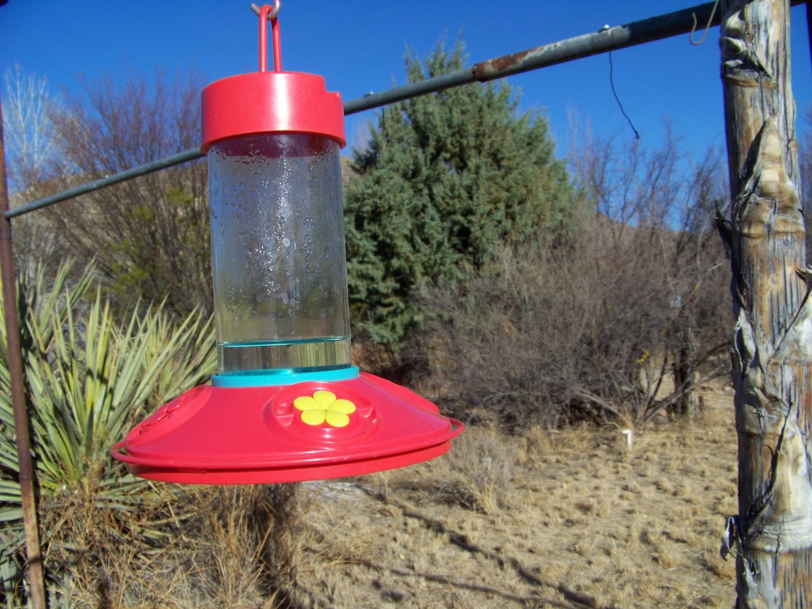 Perky-Pet® Alimentador de colibrí de vidrio de cintura pellizcante con néctar libre, modelo # 203CPBN | MosquitoMagnet.com