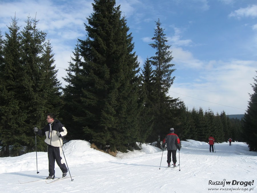 Narty biegowe - trasa na Orle w Jakuszycach