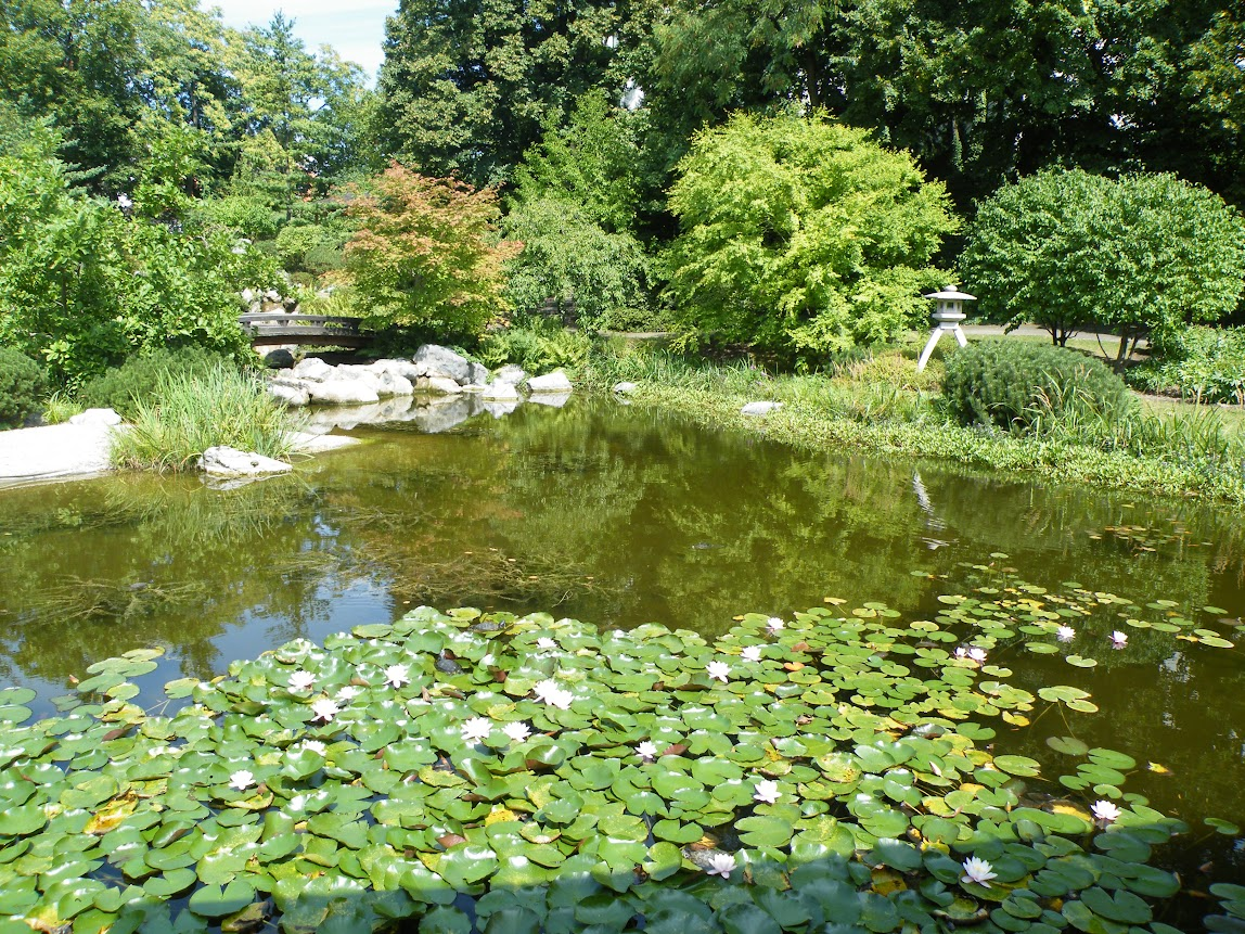 Nature in , Austria, visiting things to do in Austria, Travel Blog, Share my Trip