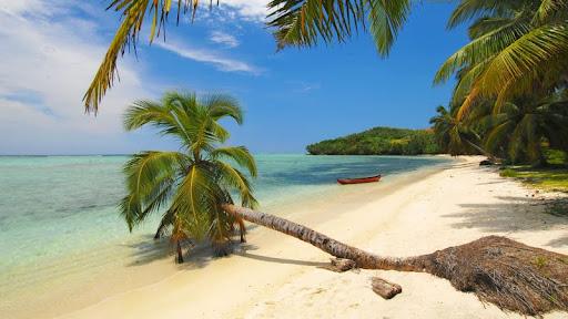 Tropical Beach, Madagascar.jpg