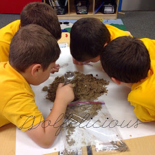 Photo of Looking at soil
