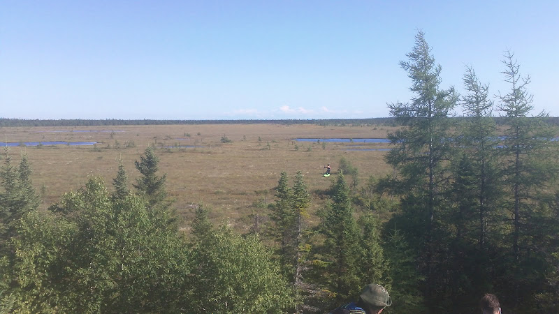 The bog we crossed when the headwinds on the lower river became too strong