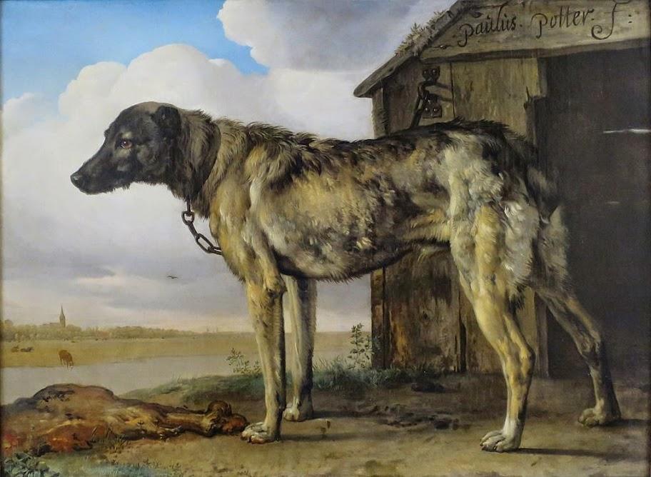 Paulus Potter - Wolf-Hound